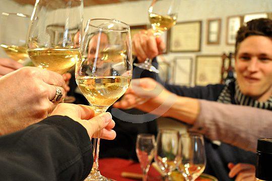 wine tour in Barcelona