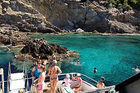 """""""Tropical Delfin"""" glass-bottom boat in Mallorca: Discover the underwater world in the Med"""