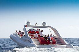 Los Gigantes Speedboot Tour ab Playa de las Americas