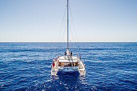 Schnellboot auf Madeira ab Funchal