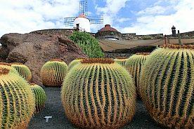 Inselrundfahrt auf Lanzarote mit privatem Guide
