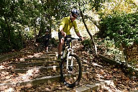 Tour for active people in Athens: mountain biking in Parnitha National Park