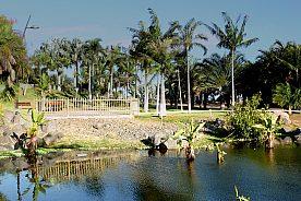 Botanischer Garten Teneriffa Eintritt