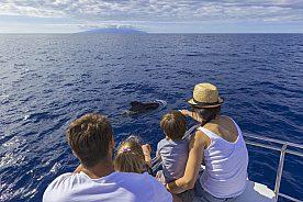 Segeln mit Kindern auf Teneriffa