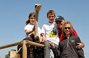 Ostrich riding in Campos in Majorca south