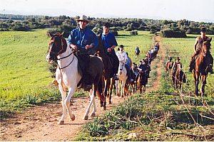 Rancho Grande Mallorca: Horseback riding with BBQ dinner in Alcudia