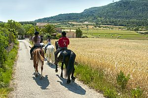 Horse riding on Majorca: Beautiful ride from Algaida through the valley of Randa