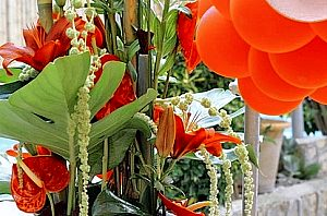 Fresh flowers at home or to your hotel in Majorca
