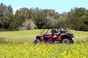 From Portocolom: Exciting Buggy Tour through Mallorca's island east