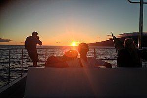 Catamaran tour Madeira at sunset: Sail into the sunset from Funchal