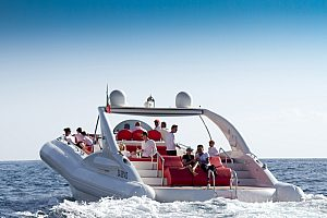 Relaxed Tenerife speedboat tour from Playa de las Americas