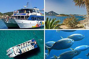 Drachen Insel Tour Mallorca