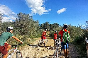Mountainbike Mallorca: an exciting bike tour in Majorca (east)
