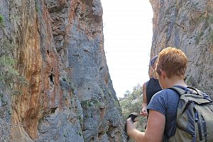 Hike through the Kritsa Gorge on Crete (East)