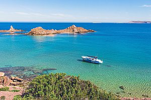 Wonderful Menorca boat tour from Fornells in the daytime or at sunset