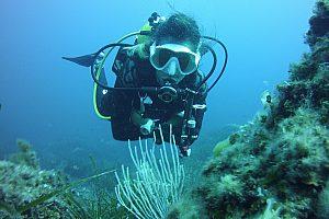 Schnuppertauchen auf Menorca