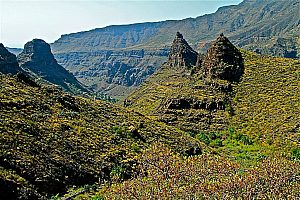 Pretty Panoramic Bus Tour in Gran Canaria setting off from the South