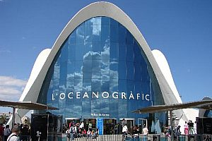 Combo ticket: Segway tour in Valencia and entry tickets for the aquarium L'Oceanografic