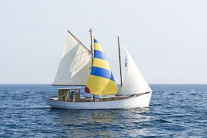 Culinary sailing excursion from Palamos with shrimp degustation and swim stop