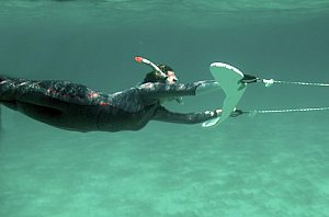 raydiving-mallorca-unterwasser
