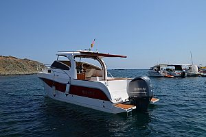 Charter exclusively a motor boat in Santa Pola - optional with skipper
