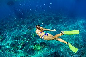 Snorkeling in the north of Mallorca: beautiful snorkeling tour in Alcudia