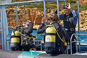 Discover the underwater world: Go diving in the Algarve