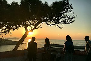 Gourmet Tour Crete: Wine Tasting in Chania at Sunset