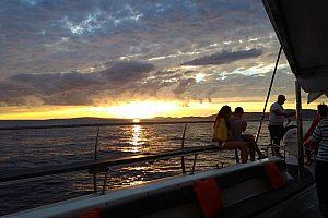 Cruise into the sunset on a Catamaran Tour from Palma de Mallorca
