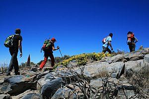 Teide Wanderung auf Teneriffa