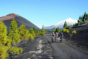 Go mountain biking in Tenerife: bike tours in the south of the island
