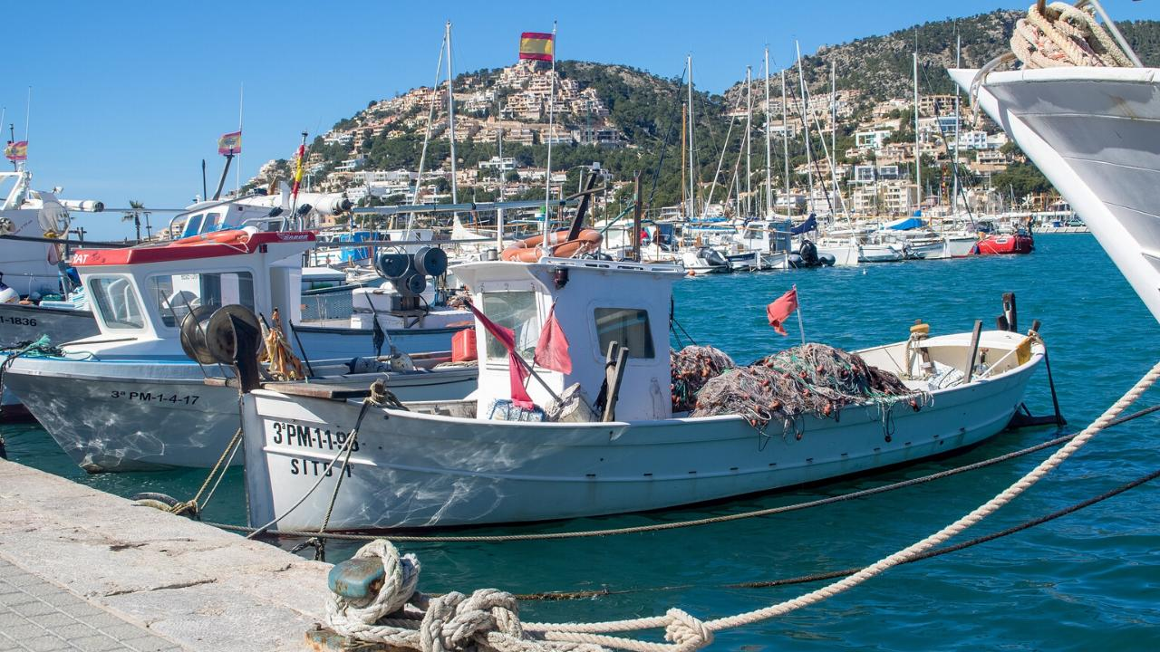 Mallorca regions southwest