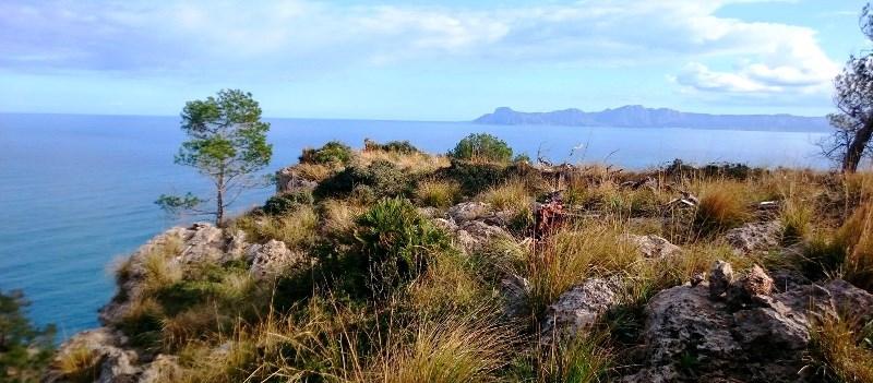 Mallorca Wanderurlaub