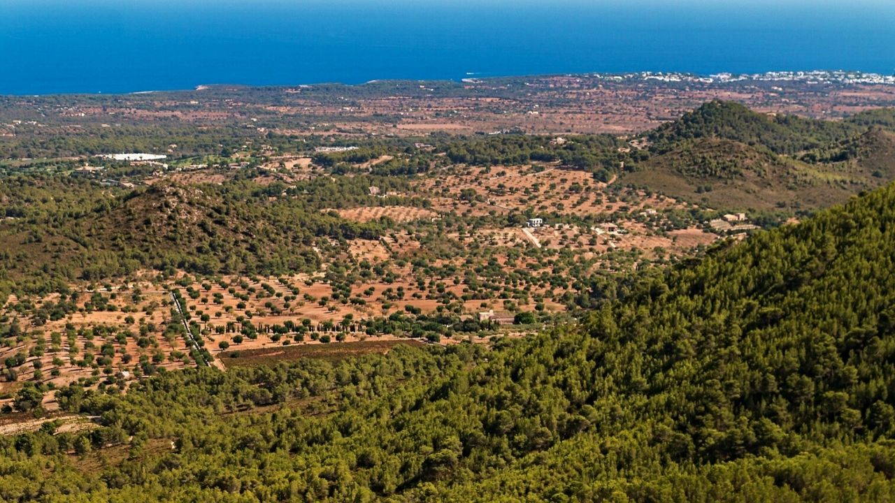 East coast Mallorca