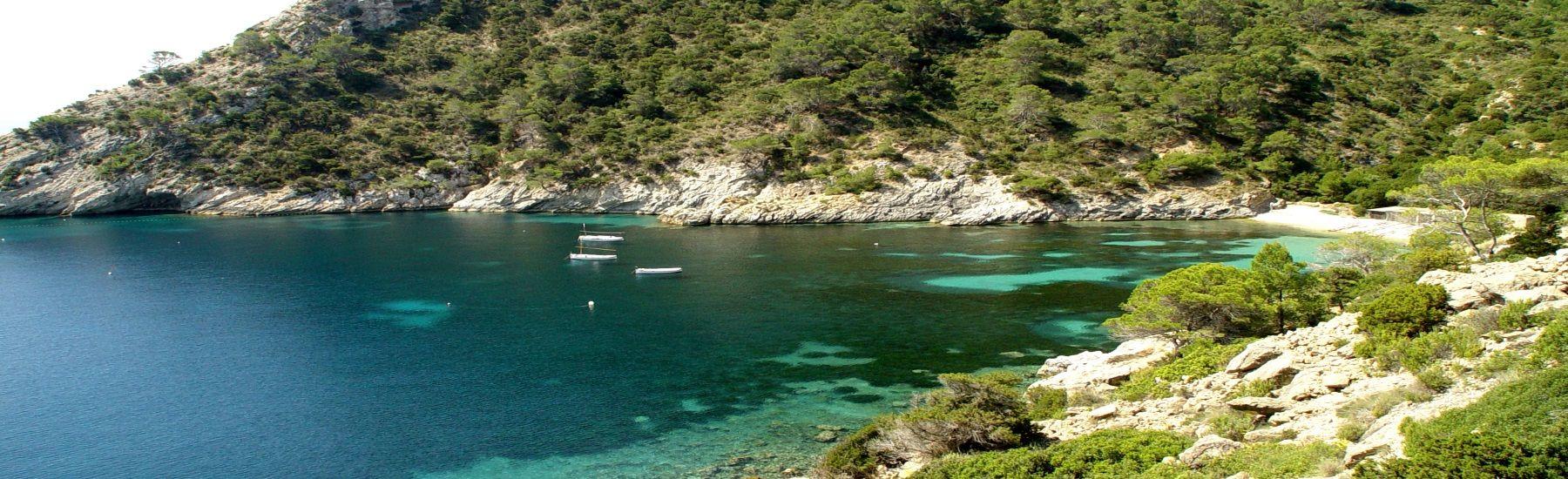 Bay in Ibiza Cala Llentrisca