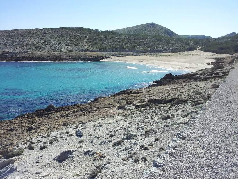 Strand Mallorca S'Arenalet des Verger von morfheos
