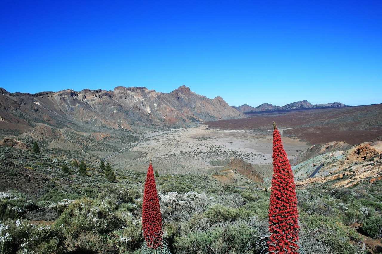 El Teide Nationalpark Teneriffa