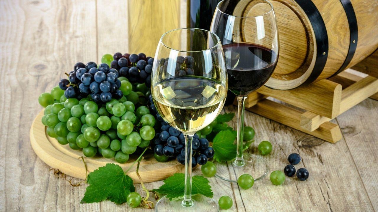 Wine tasting Mallorca